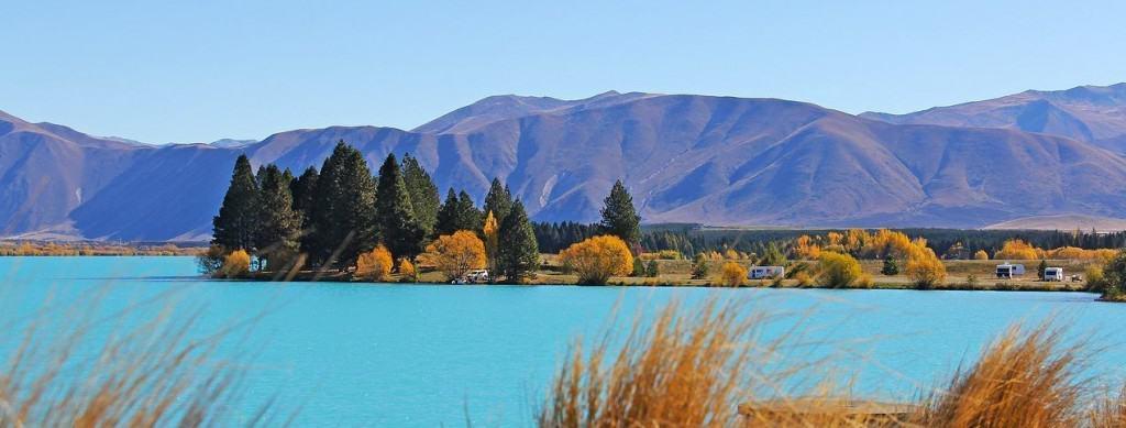 in Neuseeland leben