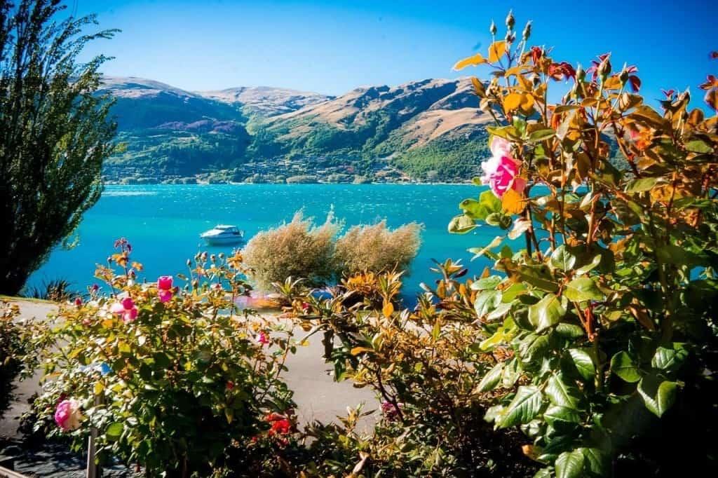 Leben in Neuseeland