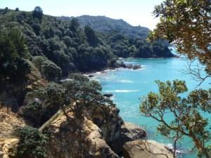 Internat Neuseeland